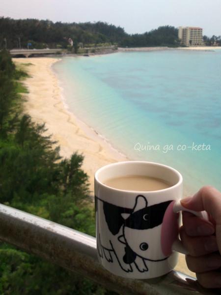 沖縄で紅茶を飲むために持参したマグカップ