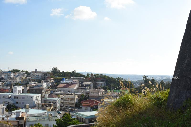 首里城から見た瑞泉酒造と崎山公園
