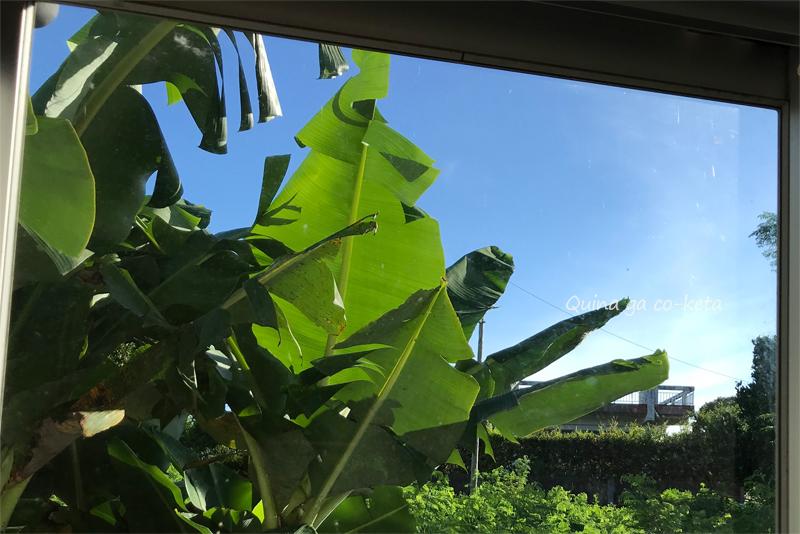 沖縄滞在先の窓から見た景色(2020年7月)