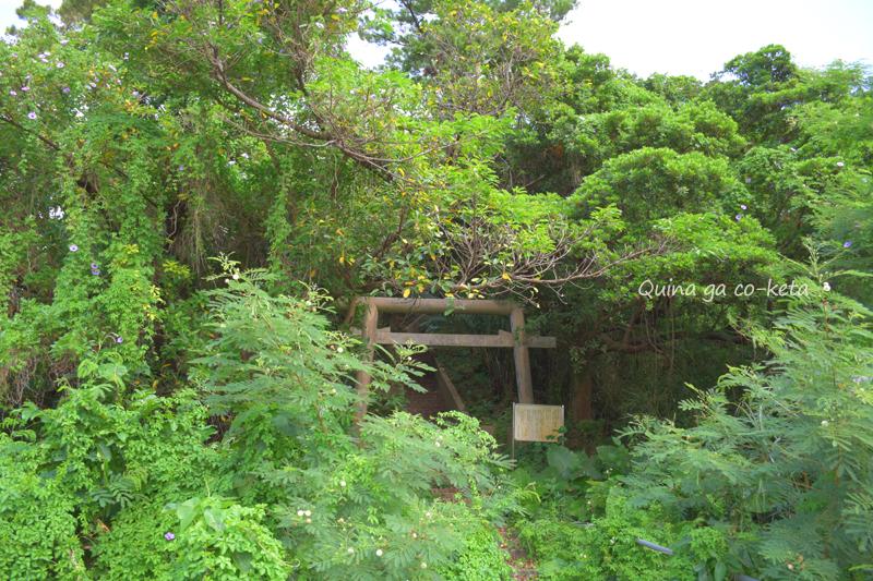丘に近づくと見えてくる鳥居(ヨリブサノ御嶽/金武町屋嘉)