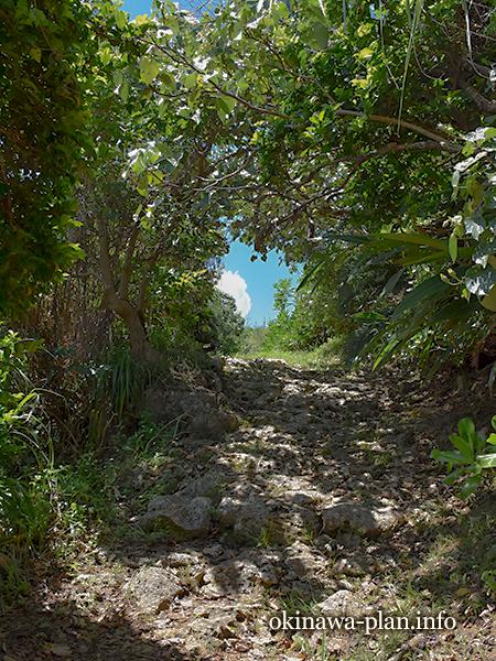 国頭方西海道にて石畳の散策ルート