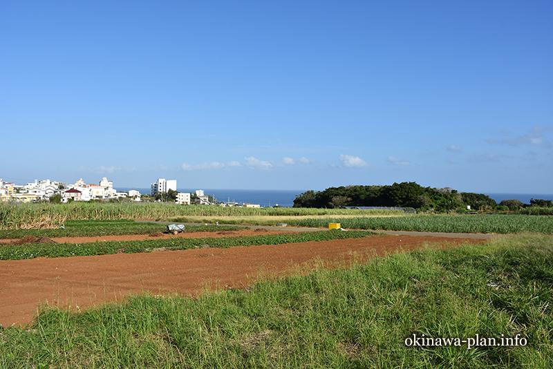 12月の沖縄の天気(2016年12月26日9:32読谷村)