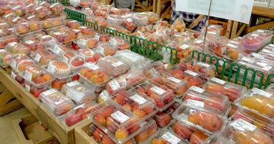 名護やんばる市場-沖縄ファーマーズマーケットの魅力を語る【その2】