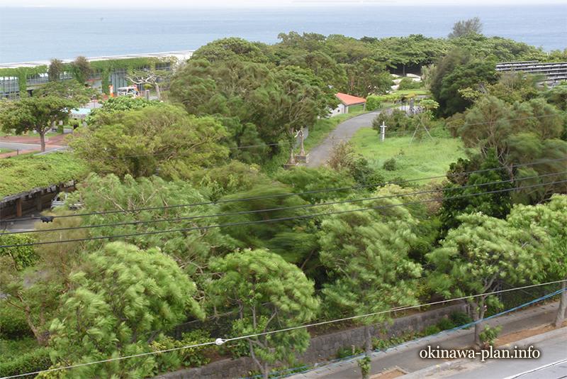 台風8号が宮古島に直撃していたころの本部町の様子