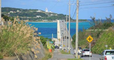 12月の沖縄で夏日を体験してきましたよー