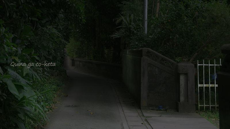 ホテル・ハイビスカスロケ地-夜の映像風に写真を加工