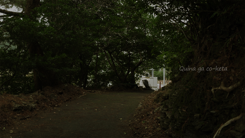 ホテル・ハイビスカスロケ地-美恵子が替え歌を歌いながら歩く