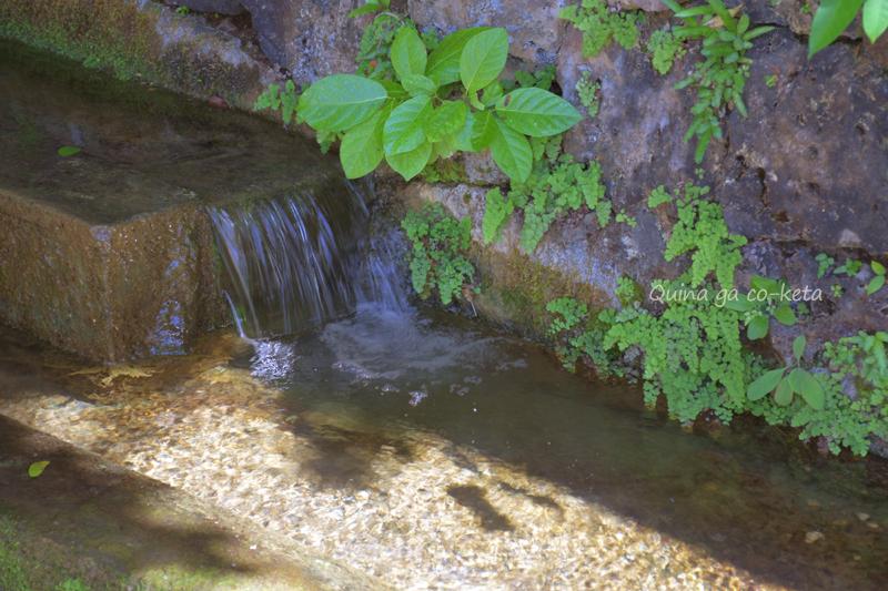 ウッカガーを流れる水(金武町金武)