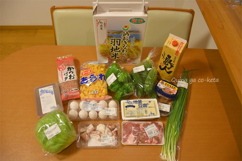 沖縄自炊旅行買い出し食の一例(10日間滞在/2018年12月)